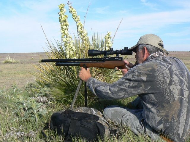 The Rifle Scope Buying Guide For Your Hunting Season